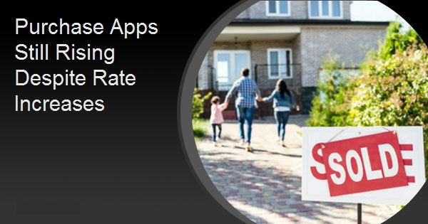 Purchase Apps Still Rising Despite Rate Increases